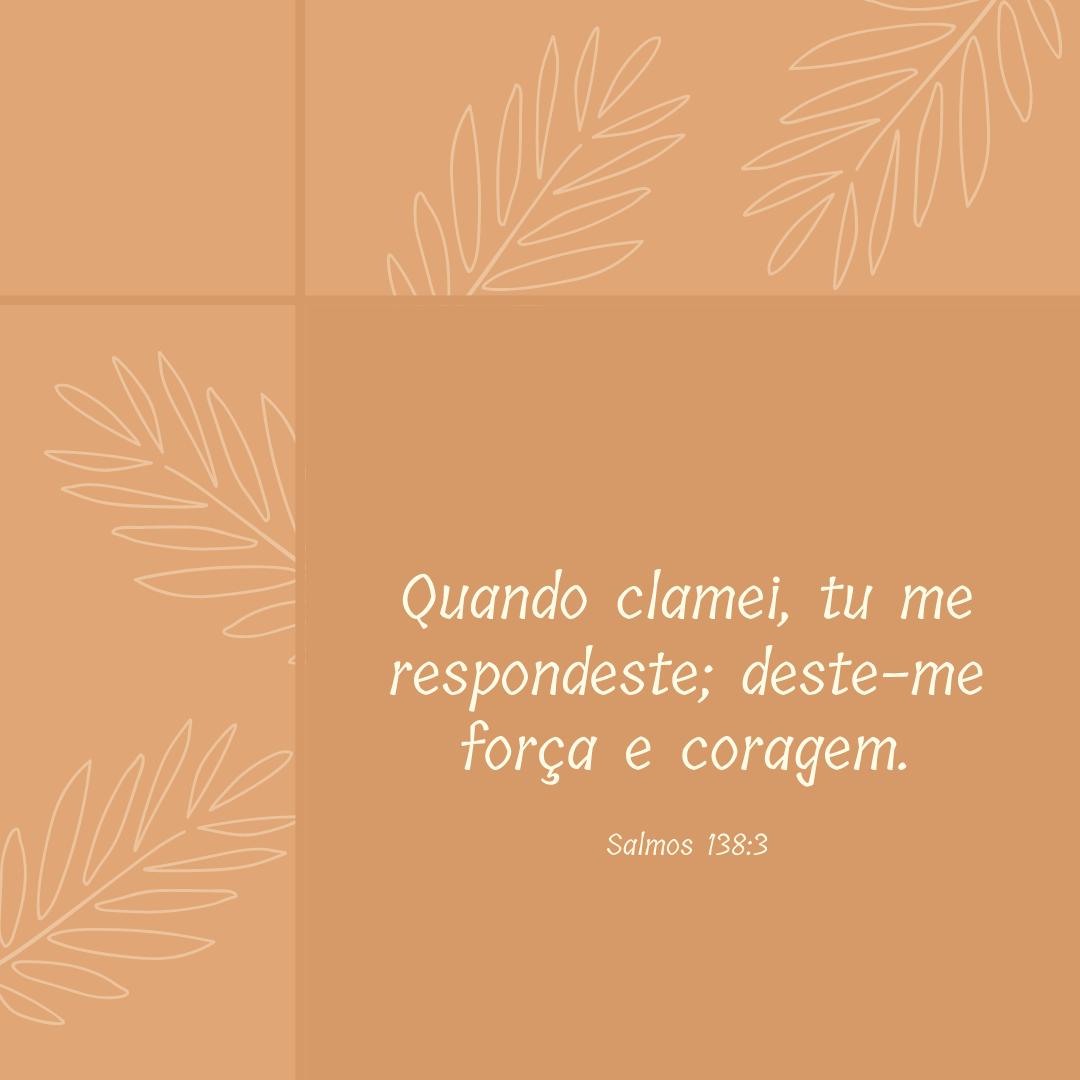 Quando clamei, tu me respondeste; deste-me força e coragem.
