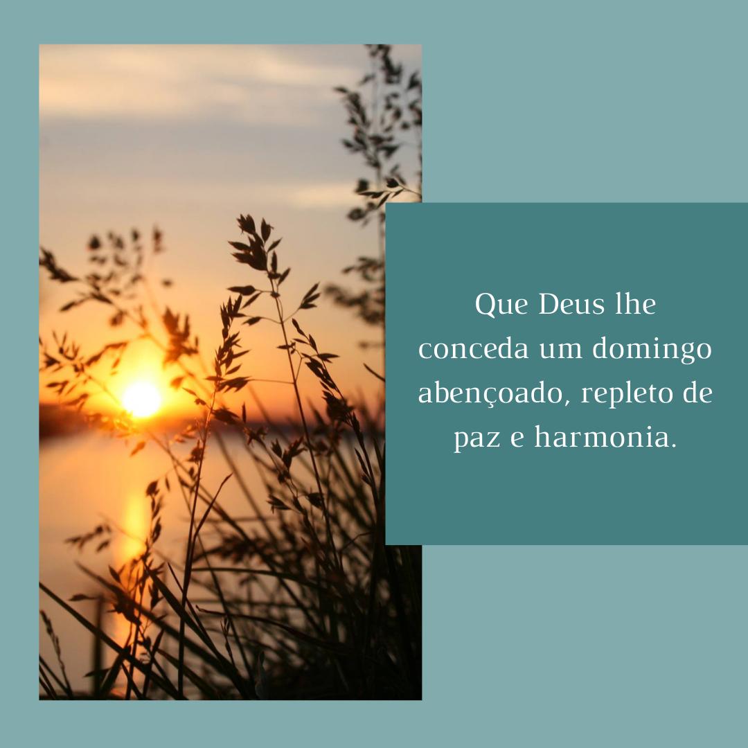 Que Deus lhe conceda um domingo abençoado, repleto de paz e harmonia.