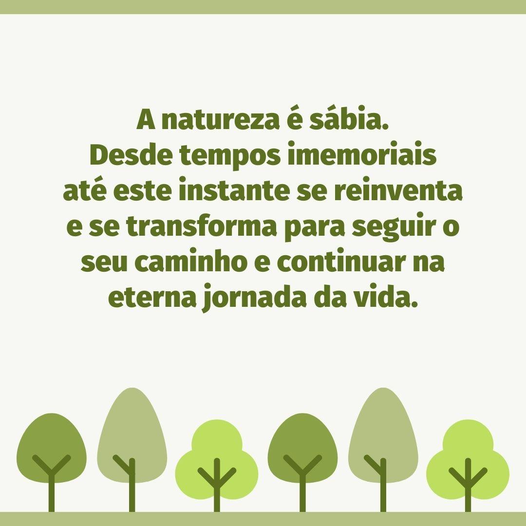 A natureza é sábia. Desde tempos imemoriais até este instante se reinventa e se transforma para seguir o seu caminho e continuar na eterna jornada da vida.