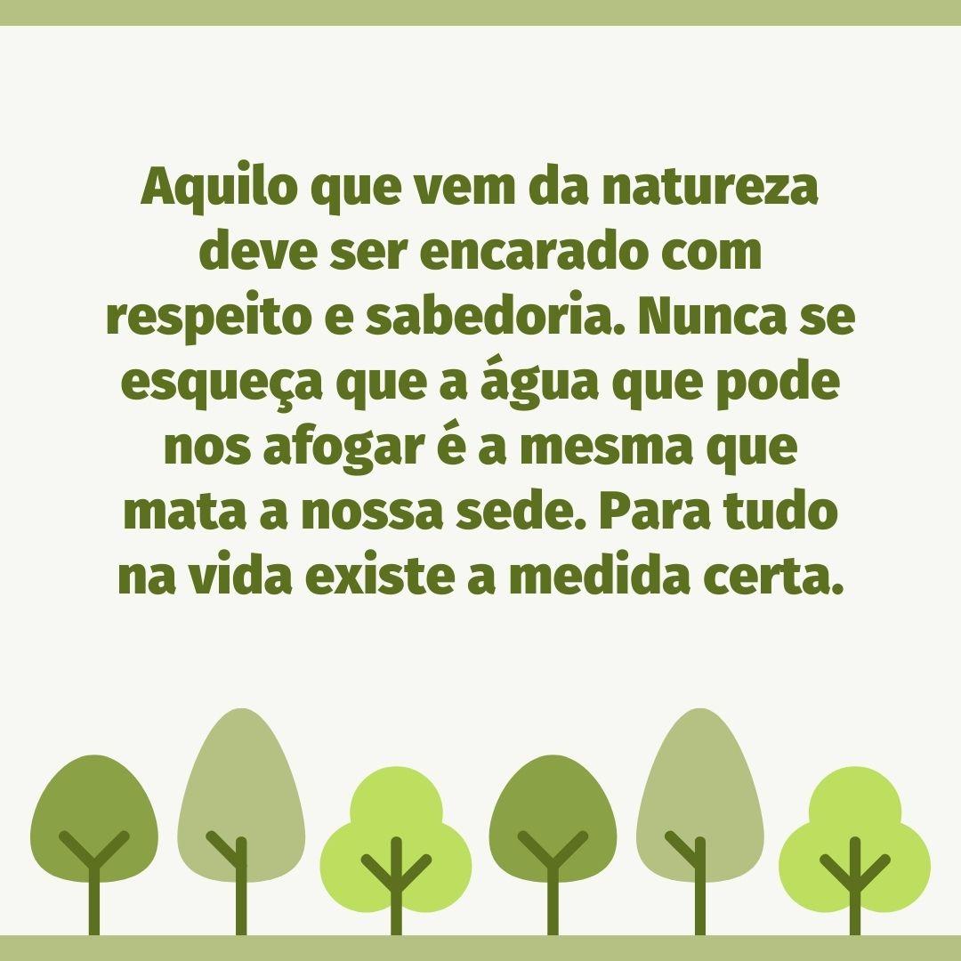 Aquilo que vem da natureza deve ser encarado com respeito e sabedoria. Nunca se esqueça que a água que pode nos afogar é a mesma que mata a nossa sede. Para tudo na vida existe a medida certa.