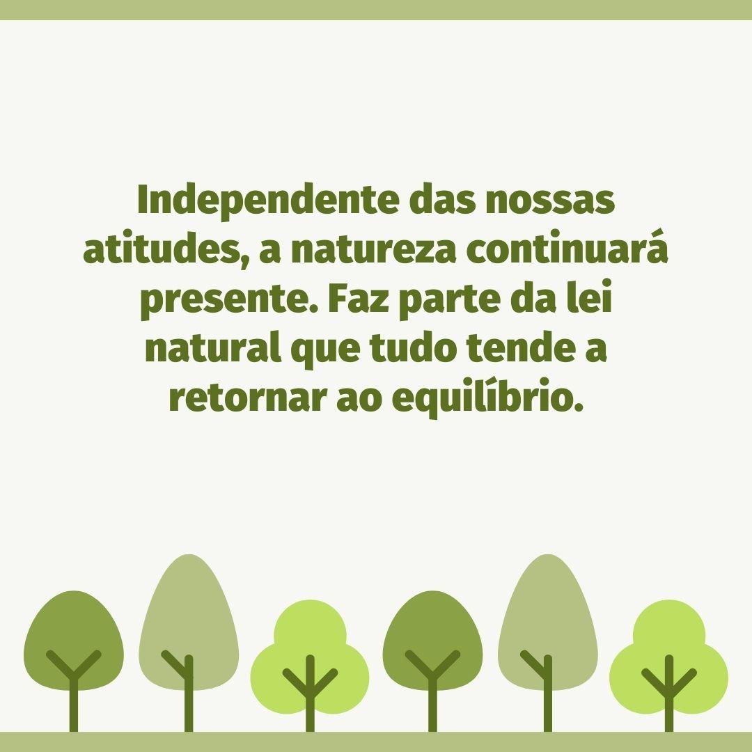 Independente das nossas atitudes, a natureza continuará presente. Faz parte da lei natural que tudo tende a retornar ao equilíbrio.