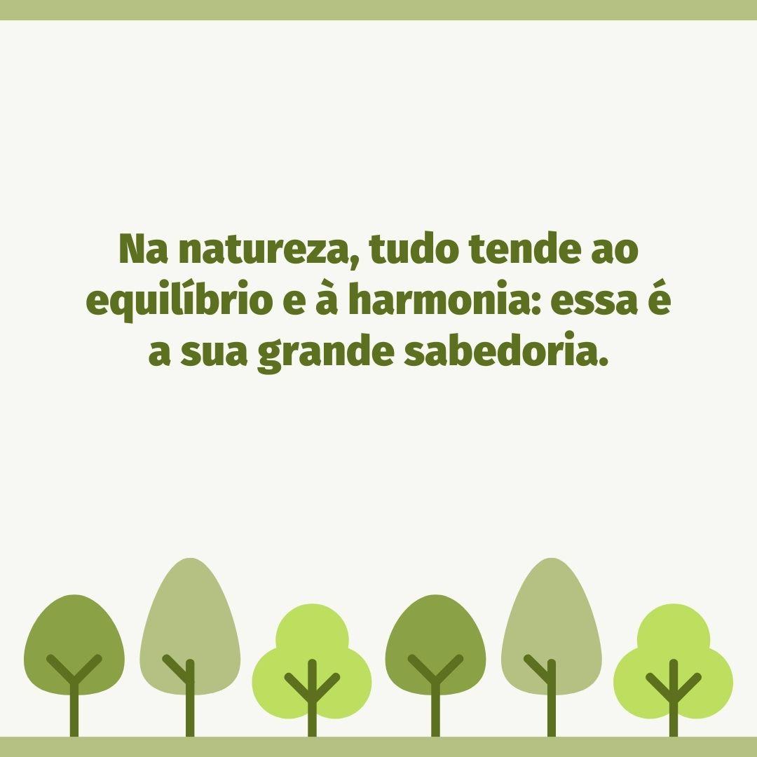 Na natureza, tudo tende ao equilíbrio e à harmonia: essa é a sua grande sabedoria.