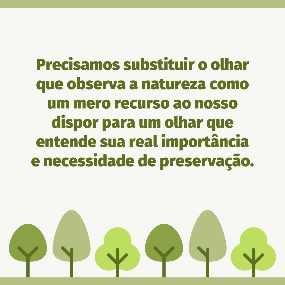 Precisamos substituir o olhar que observa a natureza como um mero recurso ao nosso dispor para um olhar que entende sua real importância e necessidade de preservação.