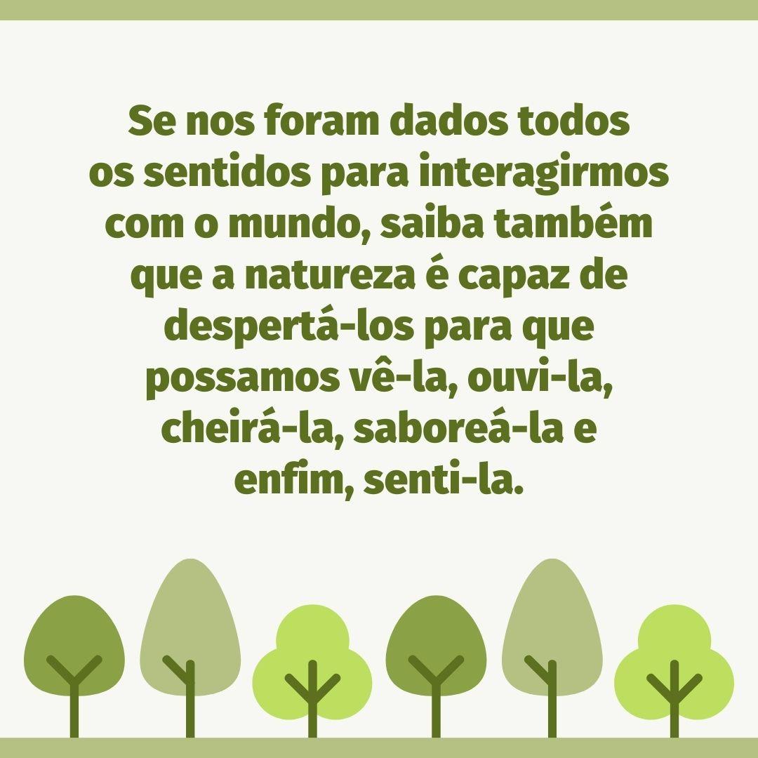 Se nos foram dados todos os sentidos para interagirmos com o mundo, saiba também que a natureza é capaz de despertá-los para que possamos vê-la, ouvi-la, cheirá-la, saboreá-la e enfim, senti-la.