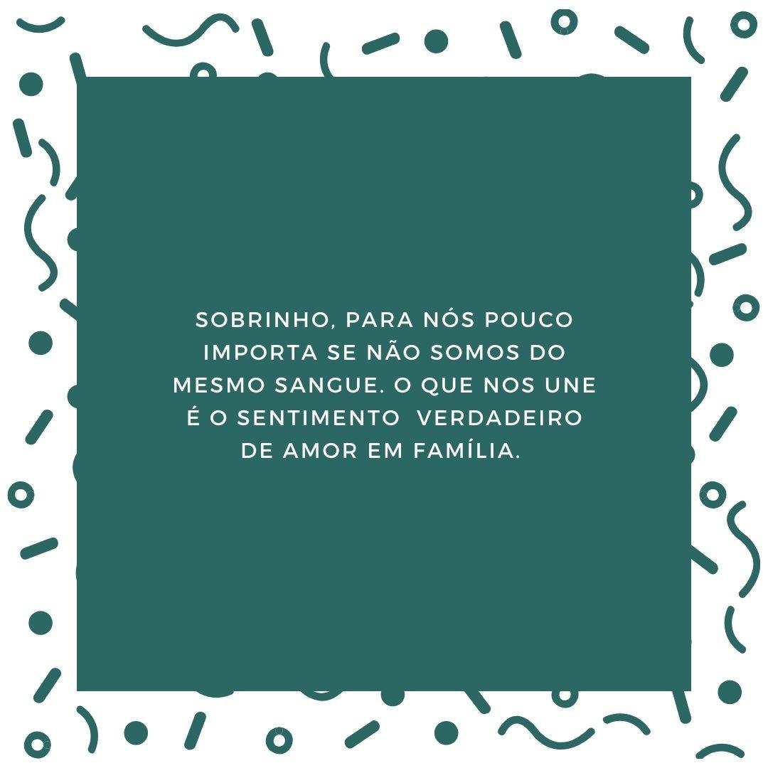 Sobrinho, para nós pouco importa se não somos do mesmo sangue. O que nos une é o sentimento verdadeiro de amor em família.
