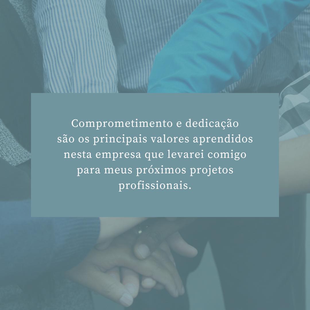 Comprometimento e dedicação são os principais valores aprendidos nesta empresa que levarei comigo para meus próximos projetos profissionais.