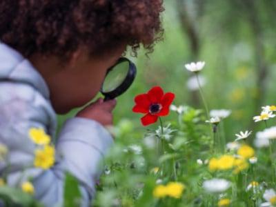 60 mensagens de lição de vida para refletir e aprender com ela