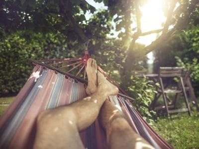 30 mensagens de bom dia de domingo para aproveitar seu maravilhoso descanso