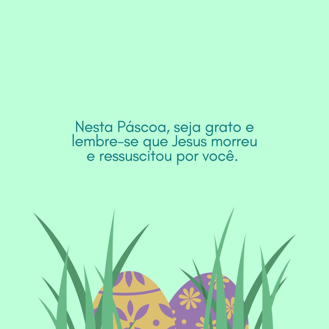 Nesta Páscoa, seja grato e lembre-se que Jesus morreu e ressuscitou por você.