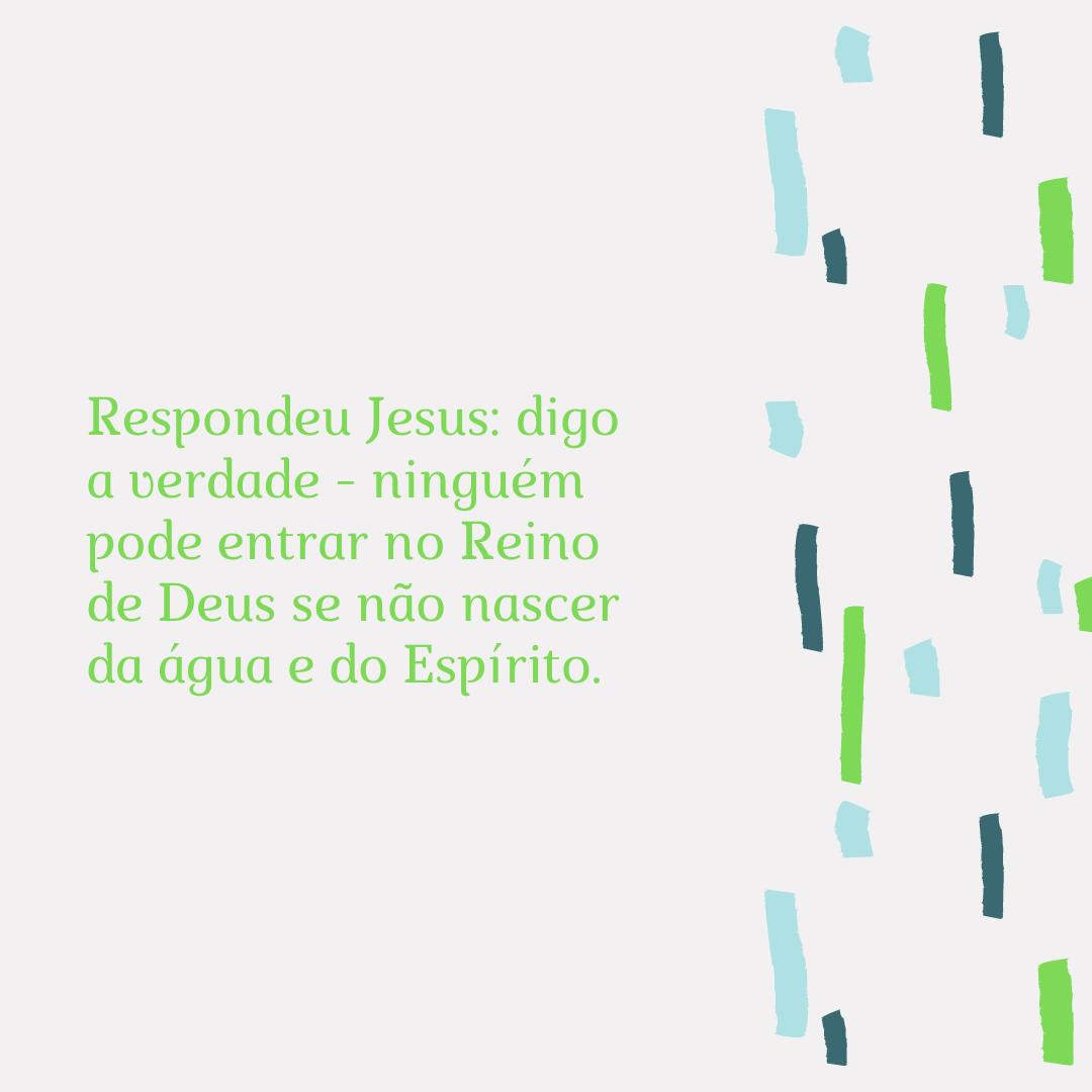 Respondeu Jesus: digo a verdade - ninguém pode entrar no Reino de Deus se não nascer da água e do Espírito.