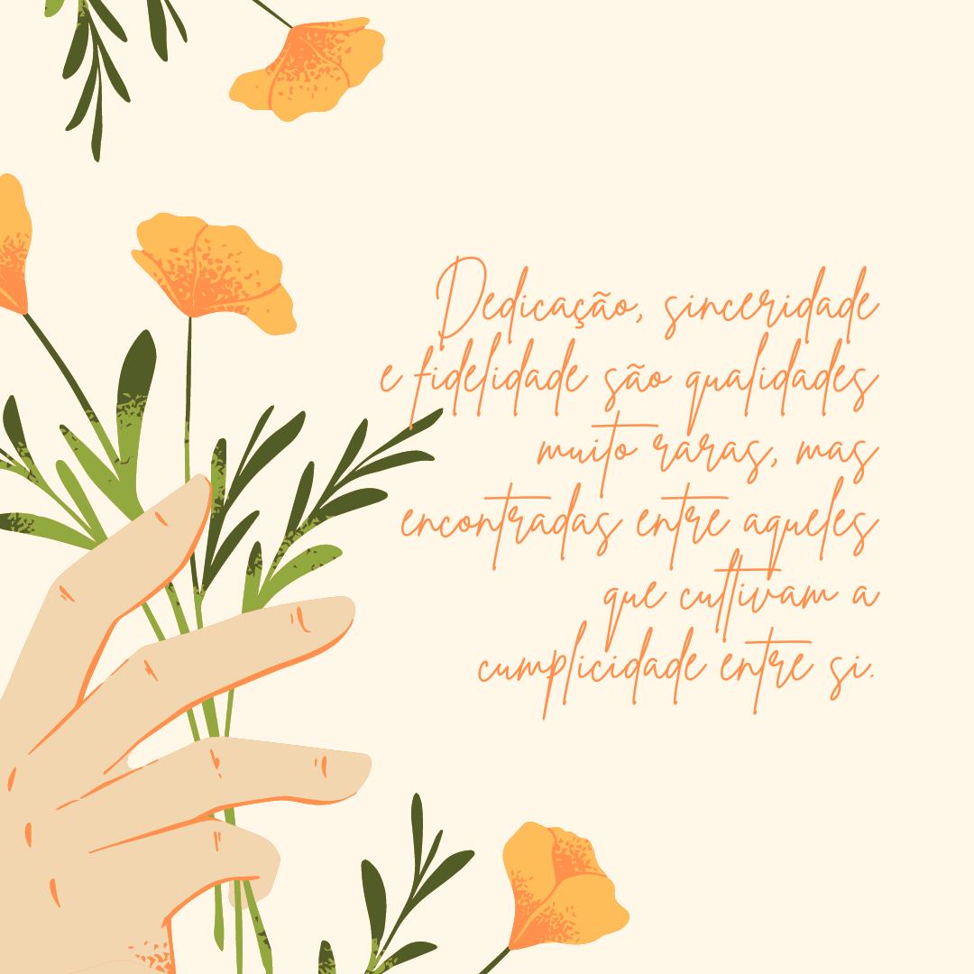Dedicação, sinceridade e fidelidade são qualidades muito raras, mas encontradas entre aqueles que cultivam a cumplicidade entre si.