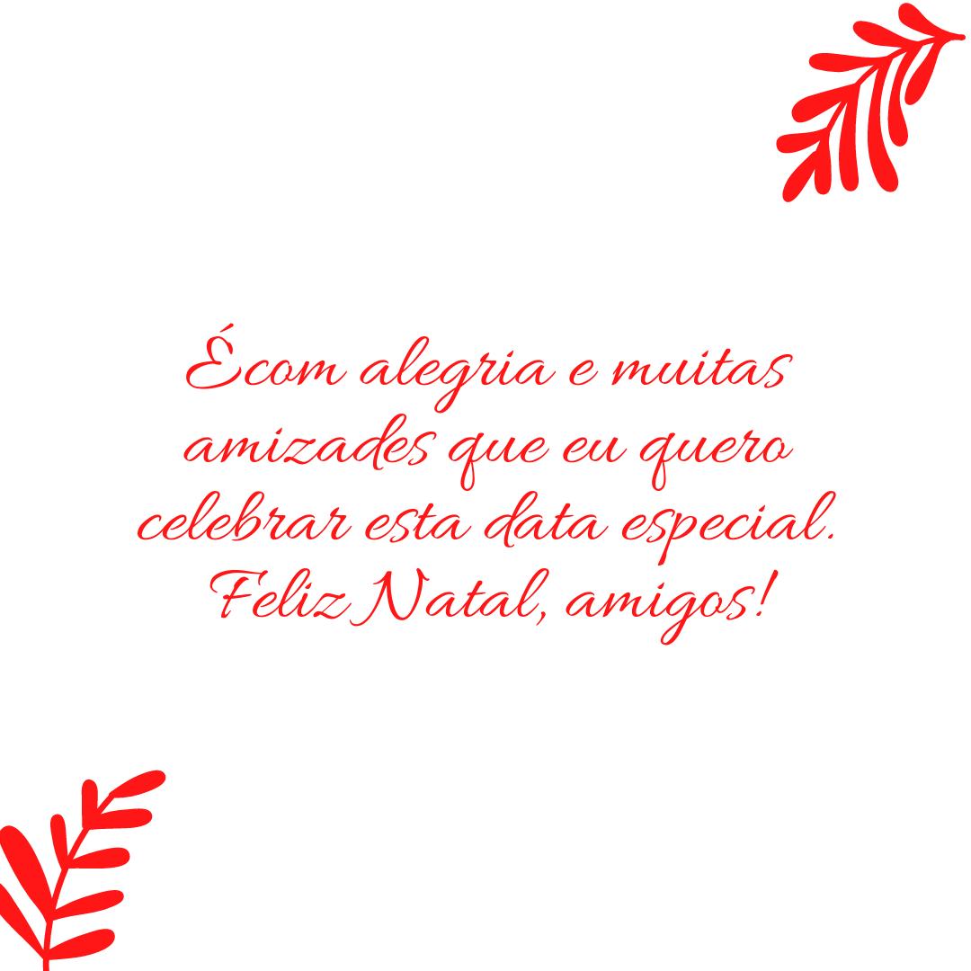 É com alegria e muitas amizades que eu quero celebrar esta data especial. Feliz Natal, amigos!