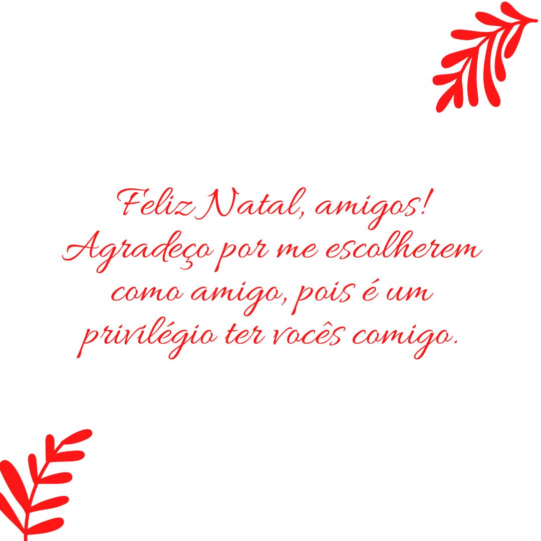 Feliz Natal, amigos! Agradeço por me escolherem como amigo, pois é um privilégio ter vocês comigo.